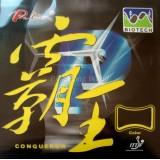 Накладка Palio Conqueror Biotech