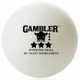 Мячи для настольного тенниса Gambler 40+ 3 star seamless 6 шт.
